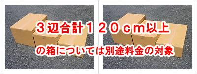 箱のサイズを問わない溶解処理
